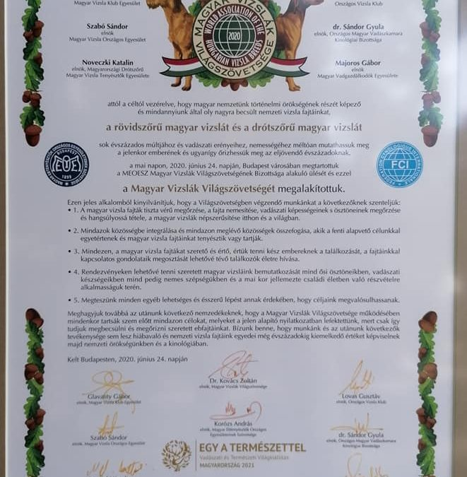 Magyar Vizslák Világszövetsége