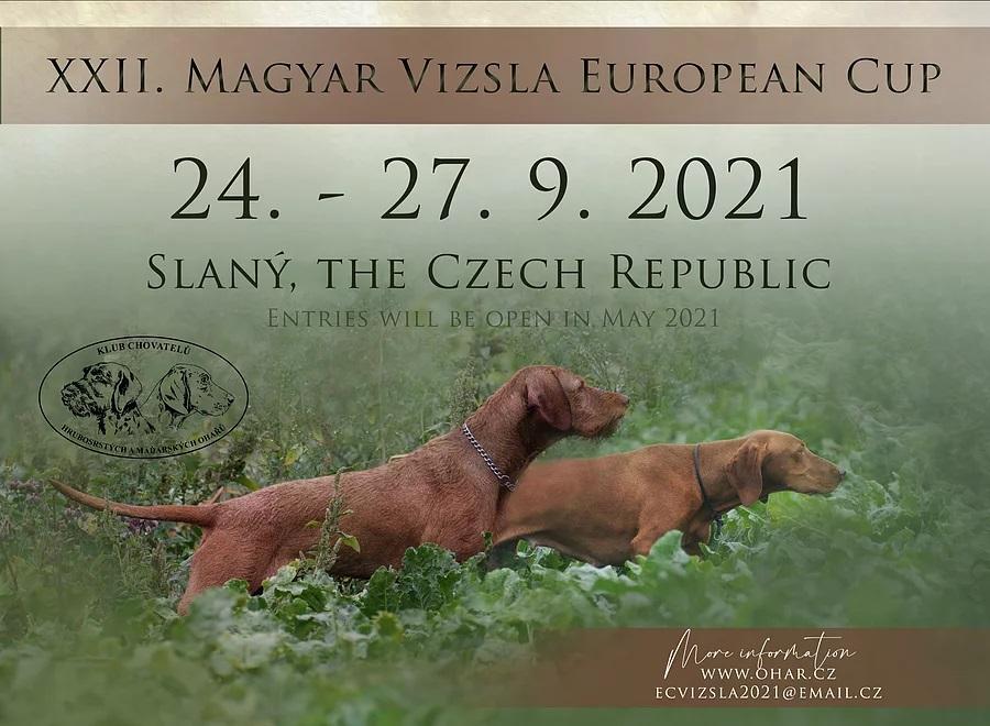 Magyar Vizsla Európa Kupa